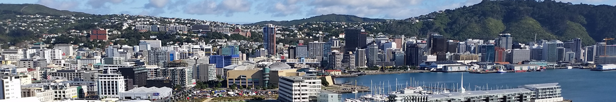 InfoAge - Local Wellington Computer Support and Database Development